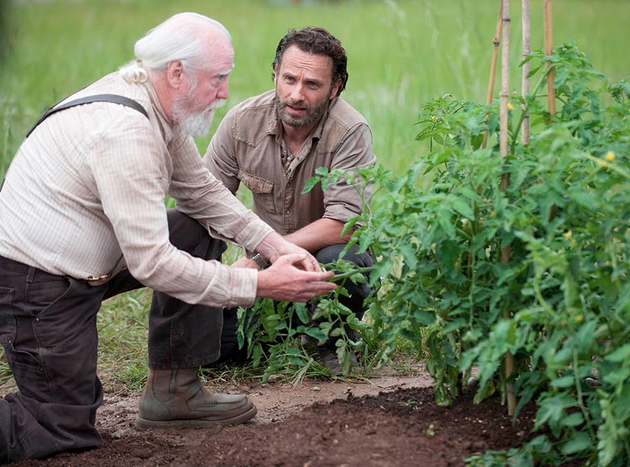 Farmer Rick gets some advice from Hershel