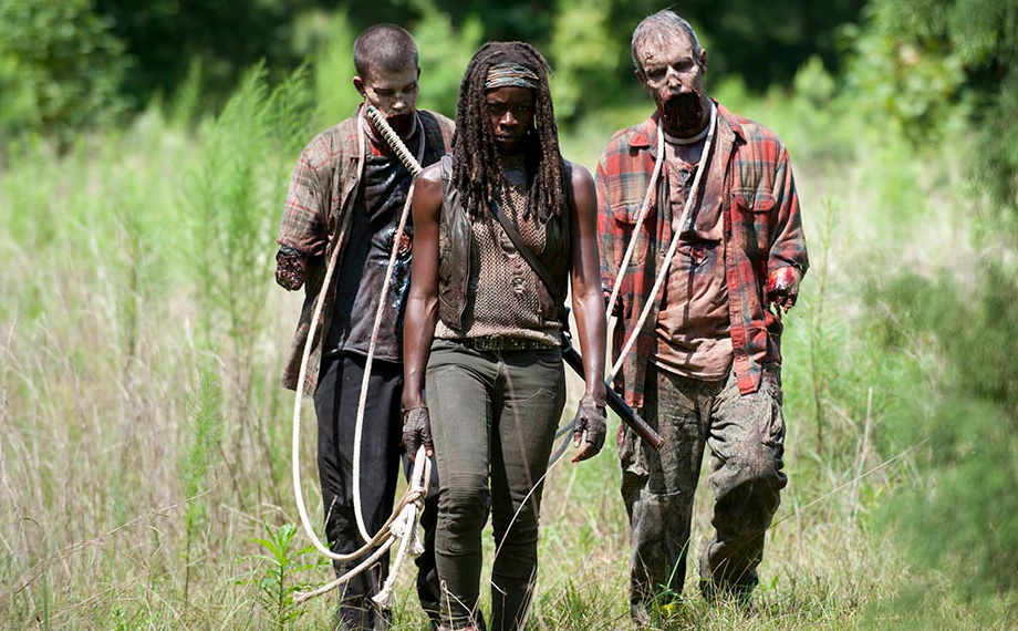 Michonne and her new pets.  Image Source: AMC